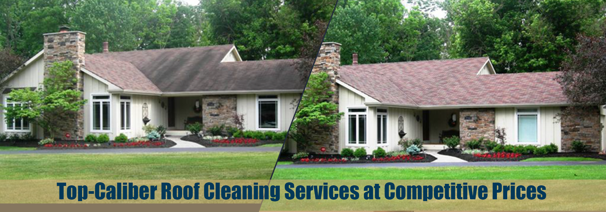 Professional Roof and Cleaning Services